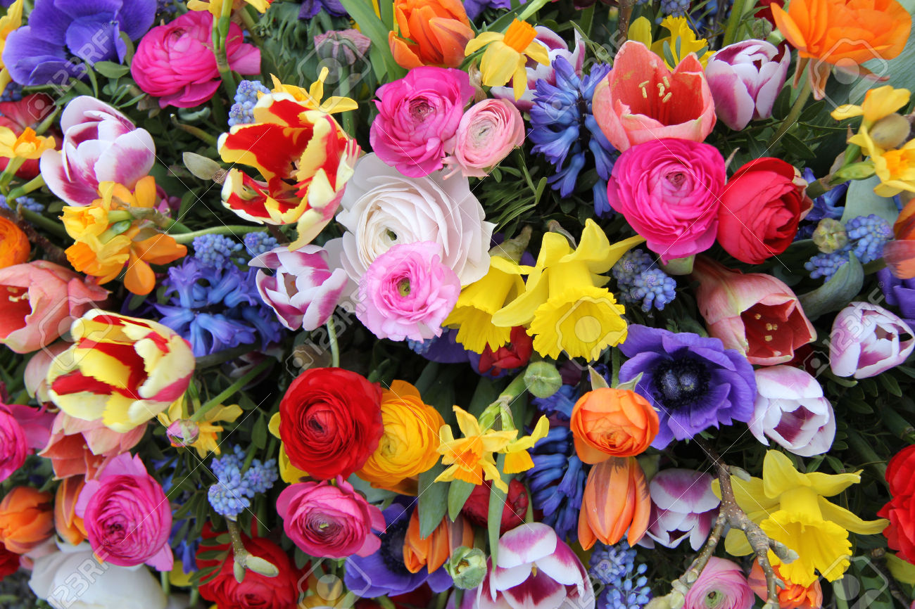Holi for Images of bouquets of roses