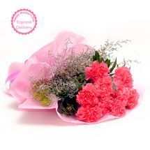Mothers Day Spl - Pink Carnations N Love